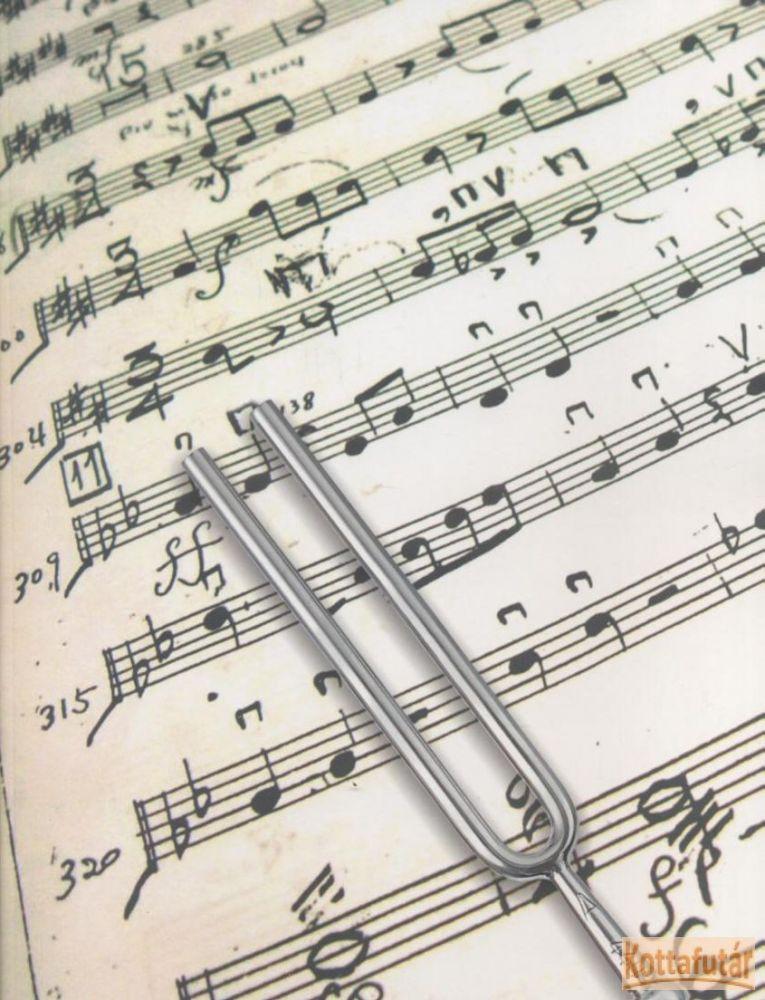 Gumis mappa - violinkulcsos