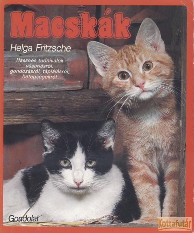 Macskák (1986)
