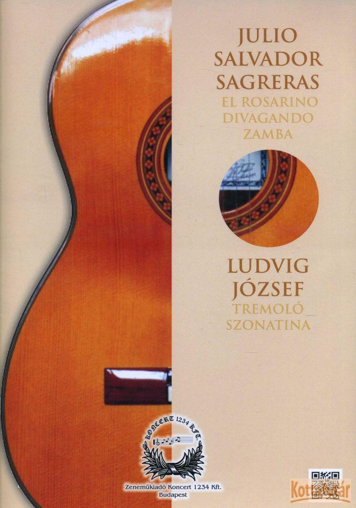 El Rosarino / Divagando / Zamba / Tremoló szonatina