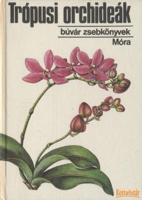 Trópusi orchideák
