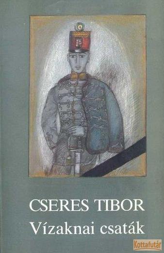 Vízaknai csaták (1988)