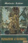 Pálmakunyhó az őserdőben